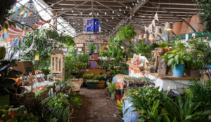 Plant And Garden Shops Close To Leesburg