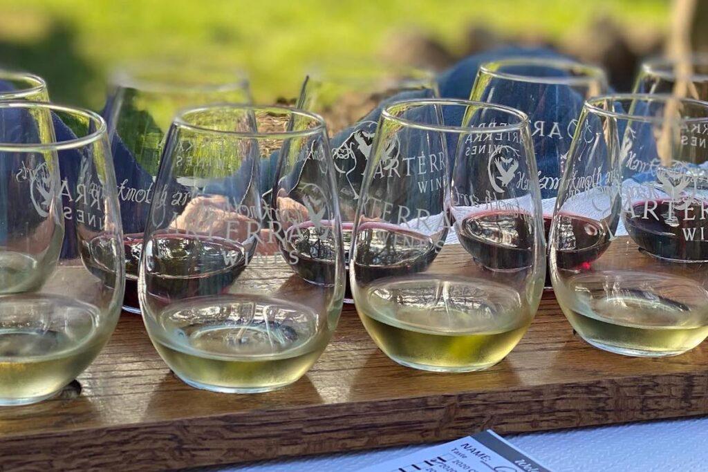 Flight of wine at Arterra Wines